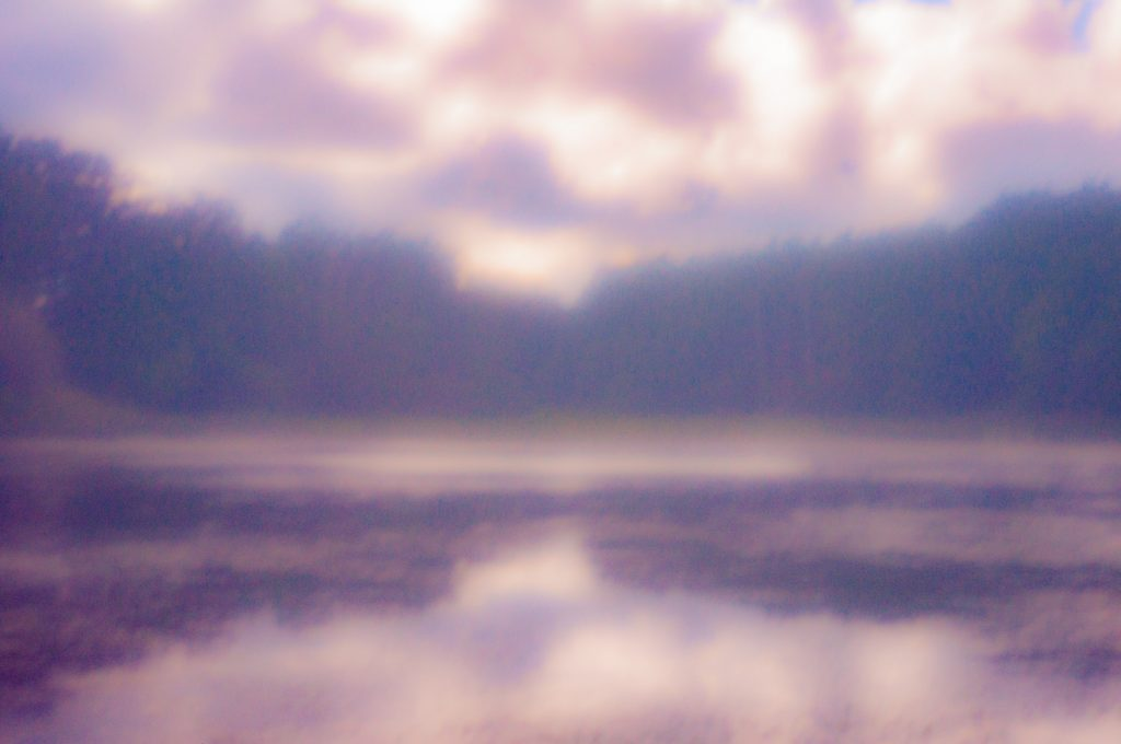 doucumentary-serradomar-france-remotelife-dogbreeding-dreamy